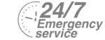24/7 Emergency Service Pest Control in Lee, SE12. Call Now! 020 8166 9746